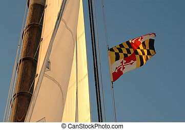 Maryland flag - The maryland flag flying at sunset on a sail...
