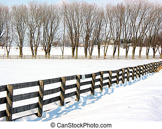 Farm fence and trees 1 - Farm fence and trees in the lane in...