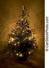 Christmas Tree - A Christmas tree decorated and all lit up,...