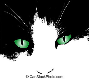 Cats eyes - Illustration of cats eyes