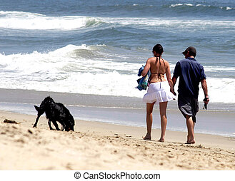 Couple walking on the beach with pet dog