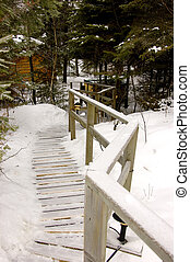 Slippery Walk - An ice and snow covered walkway