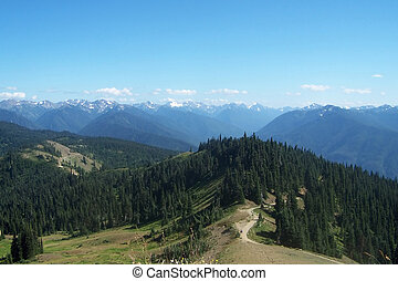 Pacific Northwest Mountains