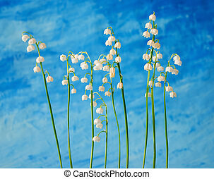 Lily of the valley on blue