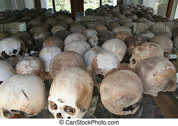 Skulls IV - Skulls in the infamous killing fields in...