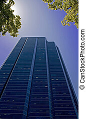 corporate building - sun flaring through tree branches to...