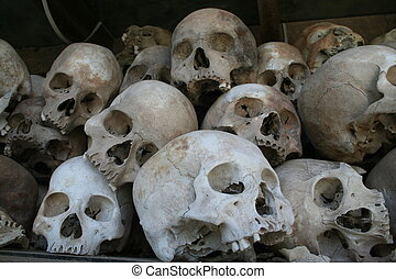Killing Fields Skull - Many of the skulls at the infamous...