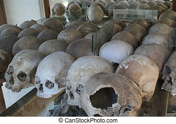 killing fields Skull - skulls like the genocide museum at...