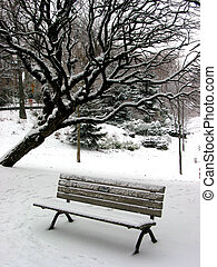 Winter bench 1 - Winter bench in a park covered with snow,...