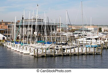Annapolis Marina - Annapolis Sailboats in the harbour