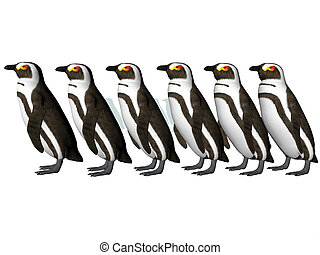 Penguin Row - Isolated row of penguins