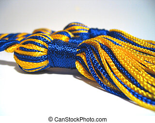 With Honors - Royal blue and gold collegiate honor cords.