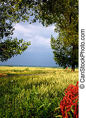 Landscape - Digital photo of a landscape made before a...