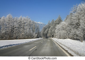 Lichtenstein 2 - A road through a wooded area in the winter....