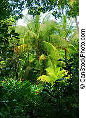 Tropical Mystery - Flower Forest Heart, Barbados.