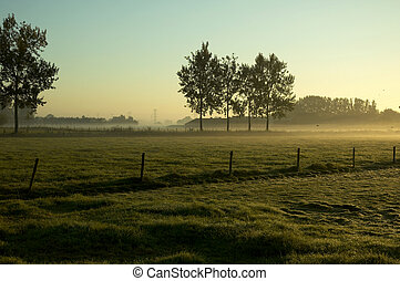 morning landscape - a beautiful morning landscape in holland...