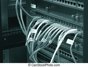 Network switch - Network cables connecting to a switch