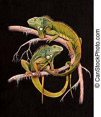 Iguanas - On black