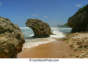 Rock Your World - Soup Bowl, Bathsheba, Barbados.