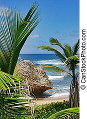 Paradise - Soup Bowl, Bathsheba, Barbados.