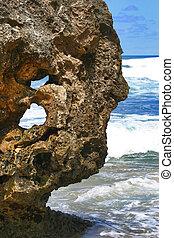 Holly Rock