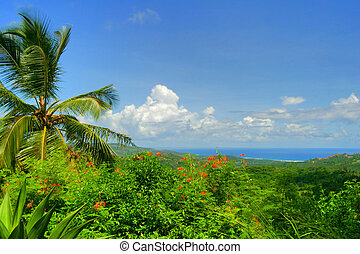 View on Atlantic Ocean - Flower Forest, Barbados.