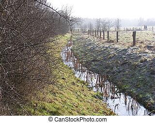 brook landscape