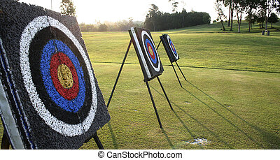 Reach the Target - Target boards at an archery range. Can be...