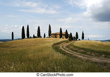 Tuscan Farmhouse - Typical tuscan Farmhouse