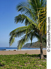 Perfect Day - Jaco Beach, Costa Rica