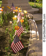 Patriotic Spirit - Amidst a small soil area of a...