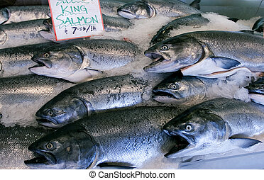 Fresh salmon - Wild King salmon in Seattles pike place...