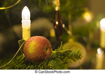 Christmas 2 - Christmas apple with candle in tree