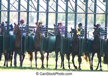 horses racing - departure of the horses racing