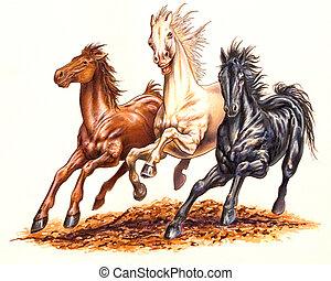 Wild - Horses
