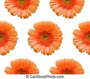 Floral pattern - Gerber infinite pattern