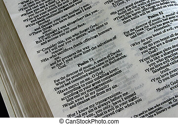 holy bible-psalm 51 - holy bible - psalm 51