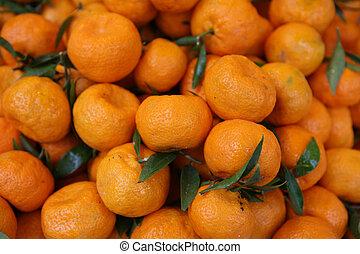 Clementine crop - A crop of clementine oranges