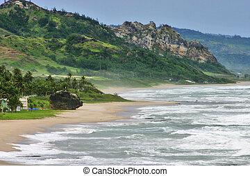 Coastline - East Coast. Barbados.
