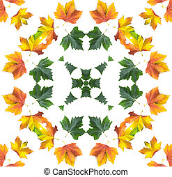 Autumn mandala - autumn orange maple leaf mandala