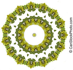 Grapes mandala - wine grapes mandala