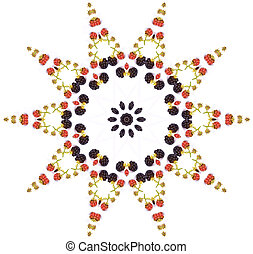 Blackberry mandala - blackberry star shaped mandala