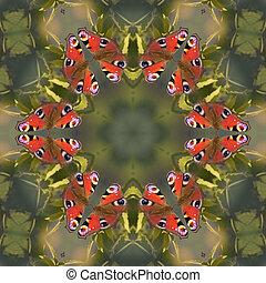 borboleta, Mandala