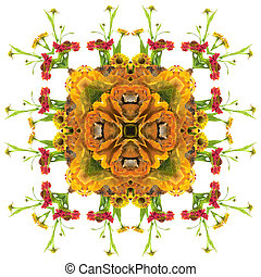 Autumn orange mandala - autumn floral mandala with different...