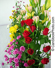 Vibrant Color - A color bouquet