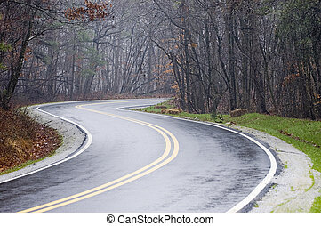 Wet Country road - Country road with fog and rain