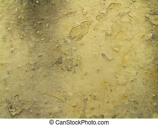 WaterStainedLM2 - Closeup of Water Stained Limestone Wall...