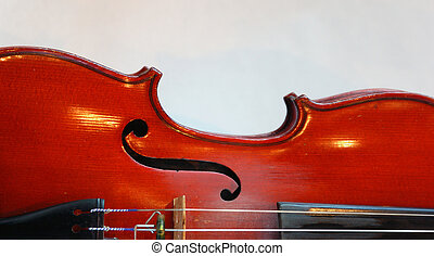Violin Curve - Curved back of a violin