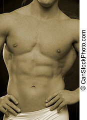 body builders abs - sepia torso