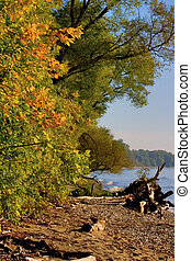 Falling Lake Shore - Fall, woods, shoreline Southern Ontario...